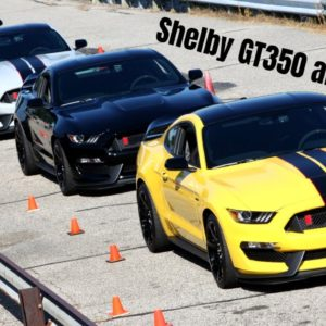Ford Mustang Shelby GT350 and GT350R